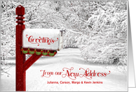 Merry Christmas From Our New Address - Winter Mailbox card