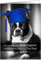 MBA Degree Graduate Congratulations Boston Terrier Dog card