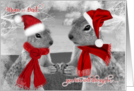 for Mom and Dad on Christmas | Squirrels in Love | Santa Hats card