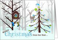 from Our Nest to Yours Christmas - Wild Birds in Winter card