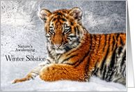 Winter Solstice Snowy Tiger Cub card