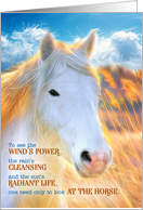 Loss of a Horse Pet Sympathy - Painted White Pony with Golden Mane card