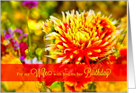 For My Wife on Her Birthday Bright Floral Garden with Red card