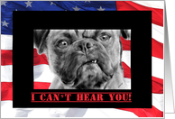 Thank the Troops Card Military Thank You Funny Pug Dog with USA Flag card