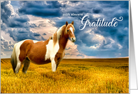 Thank You Western Sepia Toned White Horse in a Meadow card