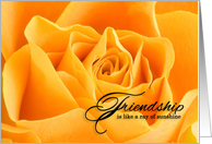 Happy Friendship Day Yellow Rose card