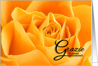 Gratzi Italian Language Thank You Yellow Rose card