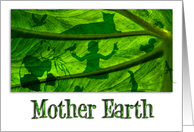 Mother Earth Elepant Leaf Blank All Occasion Card