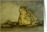 Watercolor painting of a Woodhouse Toad Birthday Card
