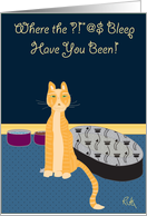 Where the Bleep Have You Been - Orange Cat card