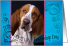 Friendship Day card featuring a Basset Hound card