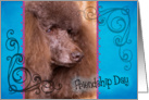 Friendship Day card featuring a brown Standard Poodle card