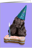Happy Birthday Card - featuring a black American Cocker Spaniel card