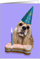 Happy Birthday Card - featuring a buff American Cocker Spaniel card