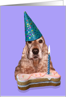 Happy Birthday Card - featuring an English Cocker Spaniel card
