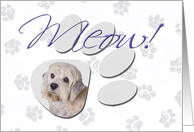April Fool's Day Greeting - featuring a Dandie Dinmont Terrier card