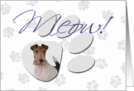 April Fool's Day Greeting - featuring a Wire Fox Terrier card