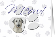 April Fool's Day Greeting - featuring an Irish Wolfhound card