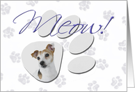 April Fool's Day Greeting - featuring a Jack Russell Terrier card