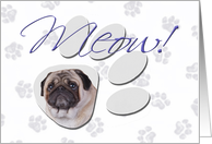 April Fool's Day Greeting - featuring a Pug card
