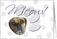April Fool's Day Greeting - featuring a Puggle card