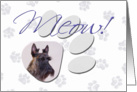 April Fool's Day Greeting - featuring a brindle Scottish Terrier card
