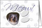 April Fool's Day Greeting - featuring a blue merle Shetland Sheepdog card