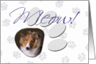 April Fool's Day Greeting - featuring a sable Shetland Sheepdog puppy card