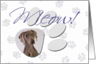 April Fool's Day Greeting - featuring a Weimaraner card