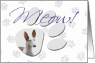 April Fool's Day Greeting - featuring an Ibizan Hound card