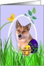 Easter Card featuring a red Australian Cattle Dog card