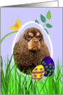 Easter Card featuring a chocolate/tan American Cocker Spaniel card