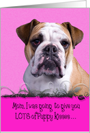 Mothers Day Licker License - featuring an English Bulldog card