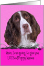 Mother's Day Licker License - featuring a liver/white English Springer Spaniel card