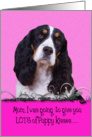 Mother's Day Licker License - featuring a tri-colored English Springer Spaniel card