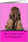 Mother's Day Licker License - featuring a liver English Cocker Spaniel card
