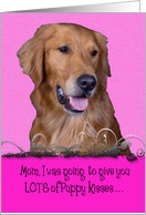 Mother's Day Licker License - featuring a Golden Retriever card