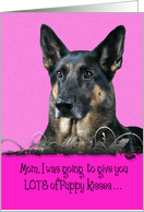 Mother's Day Licker License - featuring a German Shepherd Dog card