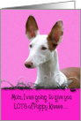 Mother's Day Licker License - featuring an Ibizan Hound card