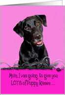 Mother's Day Licker License - featuring a black Labrador Retriever card