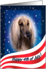 July 4th Card - featuring an Afghan Hound card