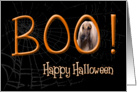 Boo! Happy Halloween - featuring an Afghan Hound card