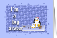 big sister to a baby brother card