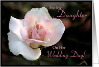 For Daughter Wedding Day ~ Pale Pink Rose card