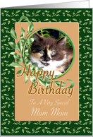 Mom Mom Birthday - Cute Green Eyed Kitten card
