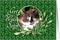 Mom Get Well - Green Eyed Calico Kitten card