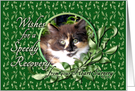 Recovery from Heart Surgery - Calico Kitten card