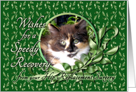 Recovery from Hip Replacement Surgery - Calico Kitten card