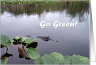Go Green, Curious Alligator card