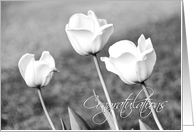 Black and White Tulips Congratulations Engagement Card